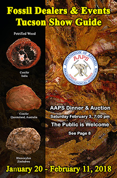 AAPS 2018 Fossil Dealers and Events at the Tucson Mineral and Fossil Shows