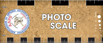 AAPS Photo Scale